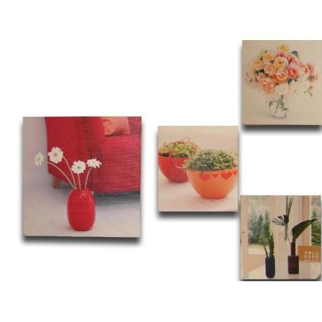 Conjunto de cuadros de plantas y flores